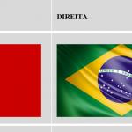 A Direita Brasileira Reage à Esquerda Ideológica
